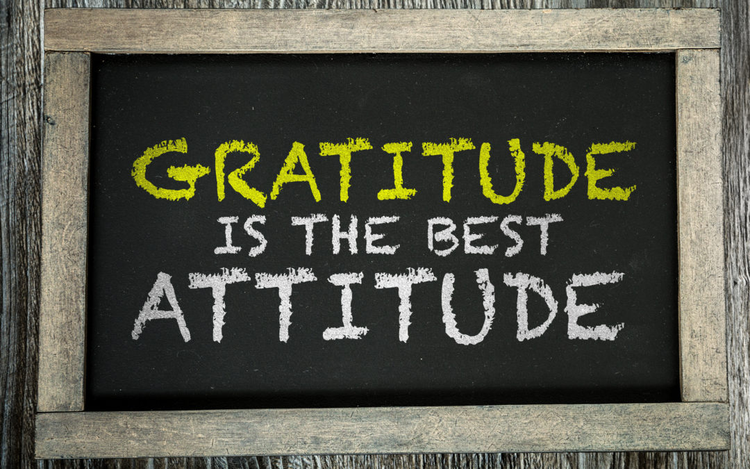 'Tis the Season for Gratitude Attitude